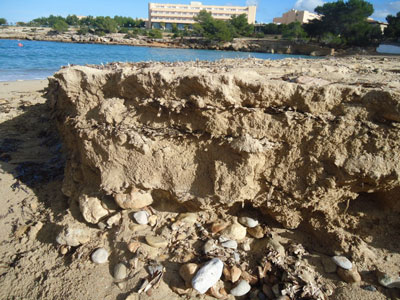 En aquesta imatge s'observen les capes intercalades d'arena i posidònia