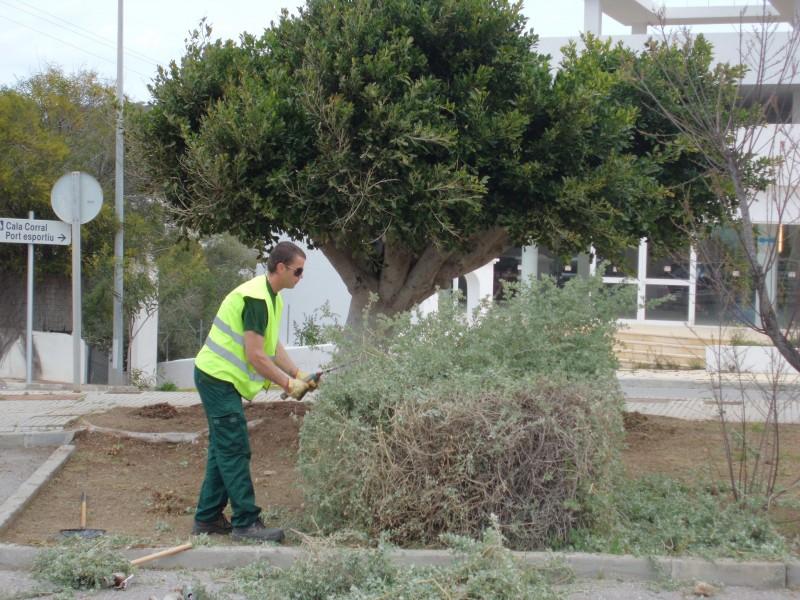 Ltimes places pel curs de jardineria i restauraci de for Aprender jardineria