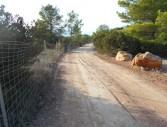 camí  Can Guimó